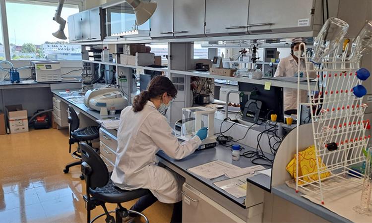 Participació catalana en un projecte europeu per accelerar nous fàrmacs basats en nanotecnologia