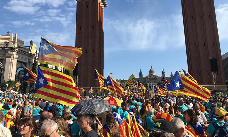 """L'ANC denuncia el """"discurs d'odi"""" contra els catalans en un fòrum de minories de l'ONU"""