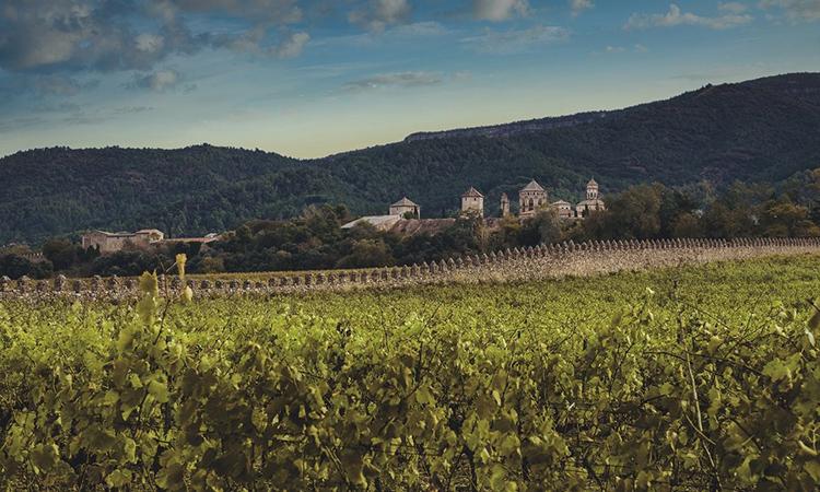 El celler català Família Torres és el vi més admirat del món